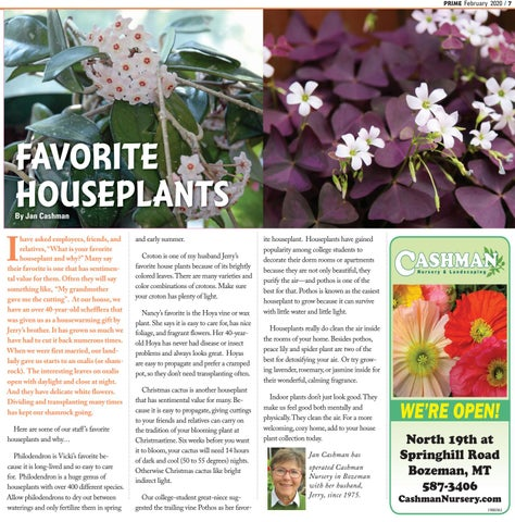 Page 7 of FAVORITE HOUSEPLANTS