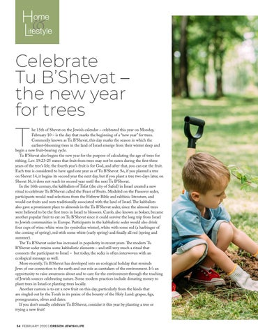 Page 54 of HOME & LIFESTYLE Celebrate Tu B'Shevat – the new year for trees
