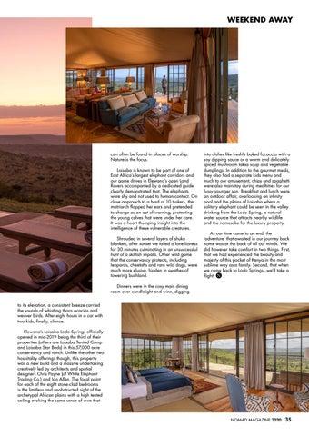 Page 35 of Spotlight: Elewana Loisaba Lodo Springs