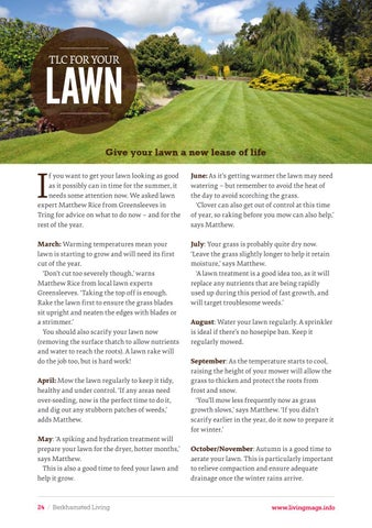 Page 24 of Give your lawn some TLC to get it looking its best all year round