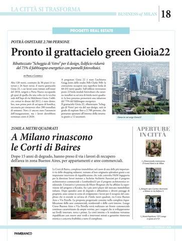 Page 18 of Pronto il grattacielo green Gioia22
