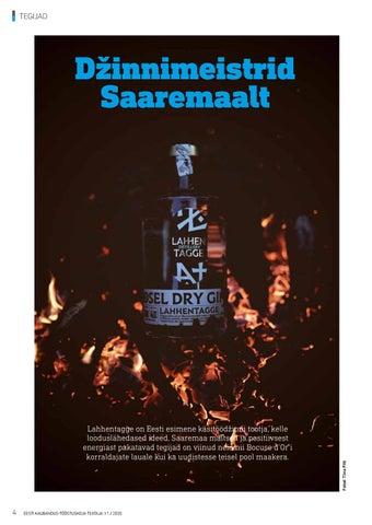 Page 4 of Perekond, kes paneb Saaremaa džinnipudelisse