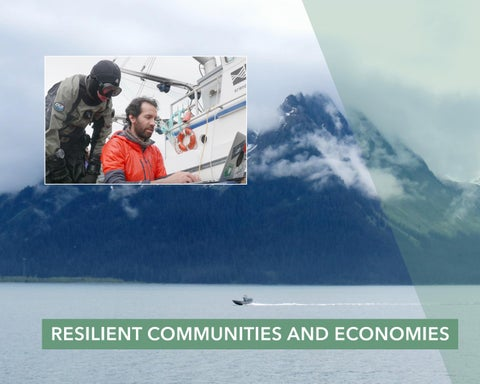 Page 14 of Resilient communities and economies