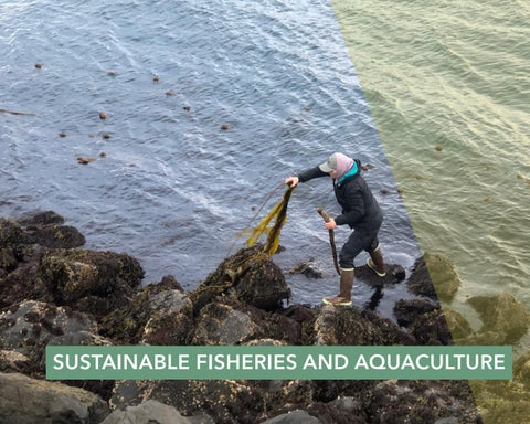 Page 22 of Sustainable fisheries and aquaculture