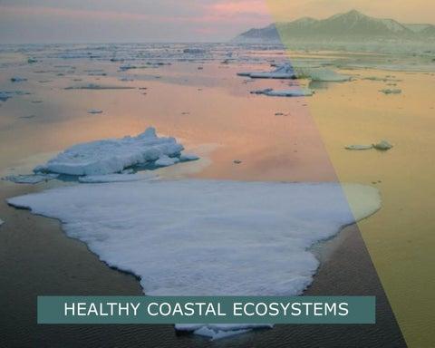 Page 4 of Healthy coastal ecosystems