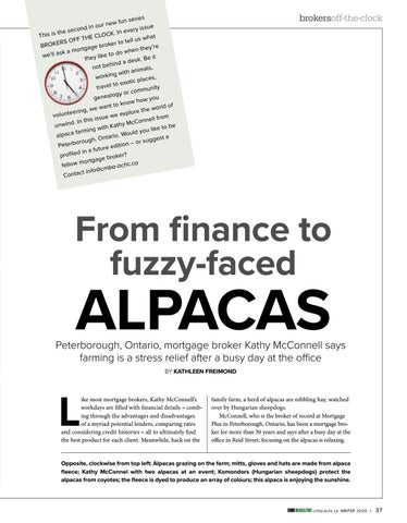 Page 37 of Off the Clock: From finance to fuzzyfaced alpacas, it's all in a day's work for Kathy McConnell