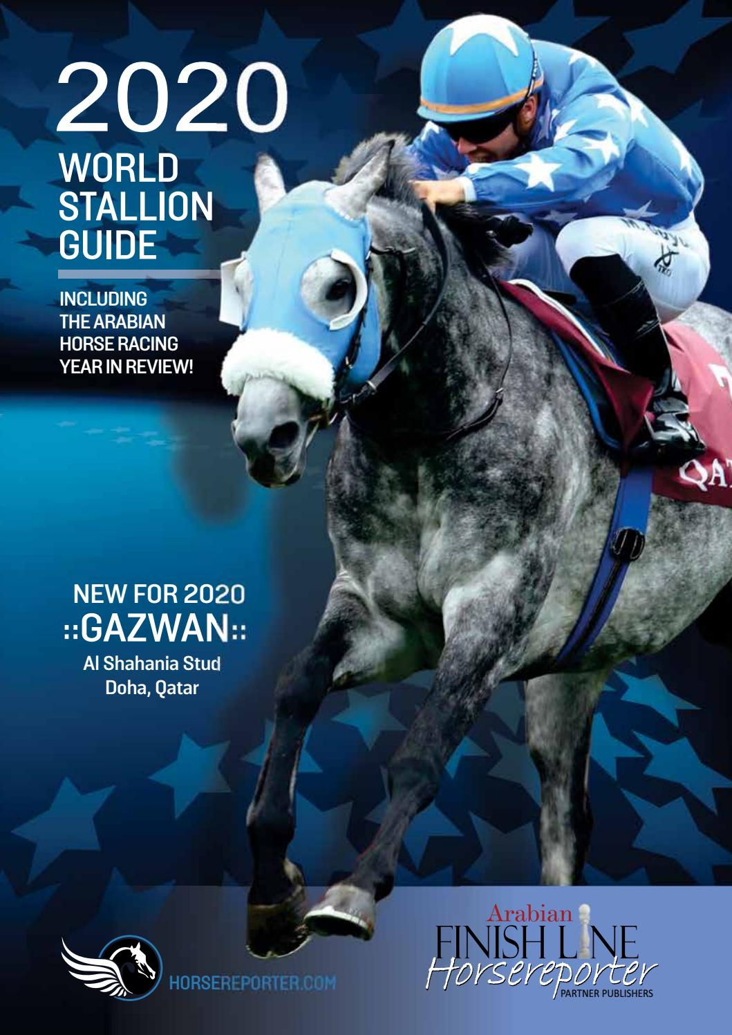 2020 Stallion Guide And Year In Review By Arabian Finish Line Issuu