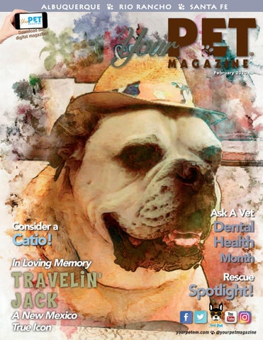 Your Pet Magazine February 2020