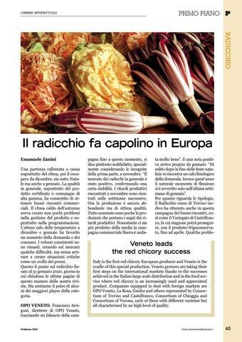 Page 47 of PRIMO PIANO RADICCHIO