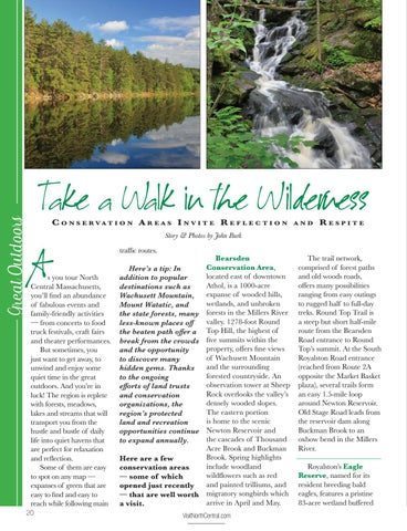 Page 22 of Take a Walk in the Wilderness