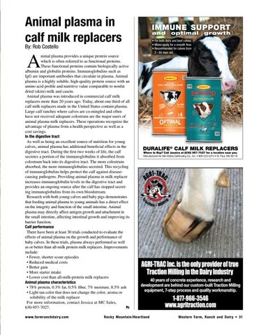 Page 31 of Animal plasma in calf milk replacers