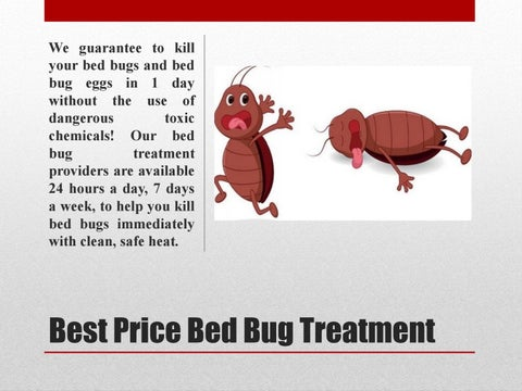 The Reliable Bed Bug Exterminator Cost By Bedbug Treatment Issuu