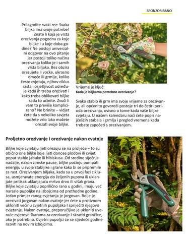 Page 31 of Orezivanje
