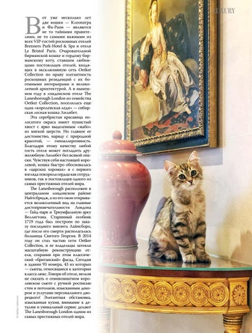 Page 45 of ПУШИСТЫЕ ХОЗЯЕВА ОТЕЛЕЙ