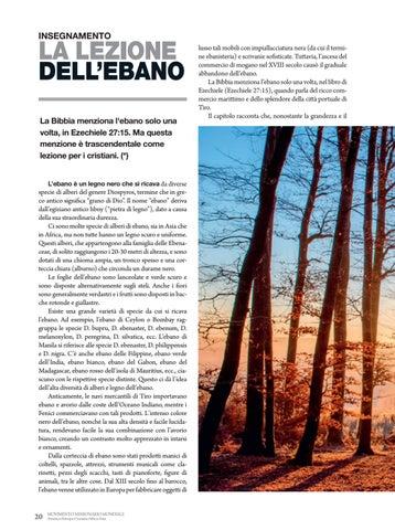 Page 20 of Insegnamento LA LEZIONE DELL'EBANO