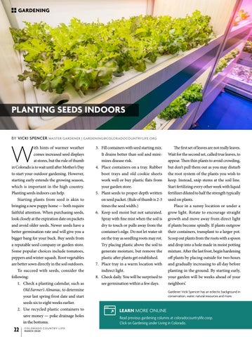 Page 22 of PLANTING SEEDS INDOORS