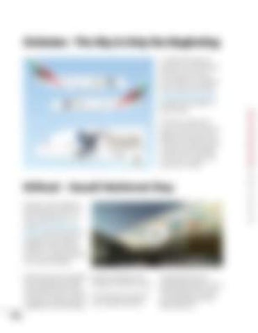 Page 24 of What makes for a good and an effective airline livery?