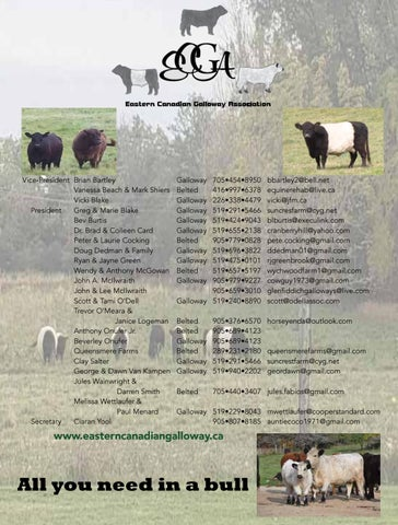 Page 17 of The Joy of Cattle: Veterinary Profile