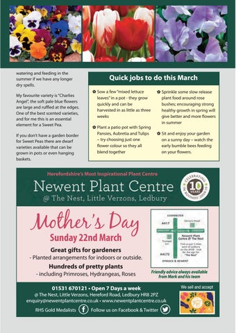Page 39 of Newent Plant Centre