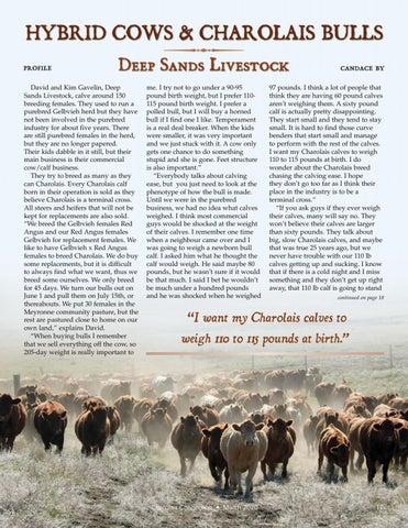 Page 17 of Profile – Deep Sands Livestock