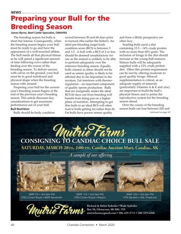Page 40 of Preparing your Bull for the Breeding Season