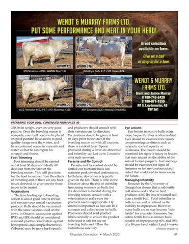 Page 41 of Preparing your Bull for the Breeding Season