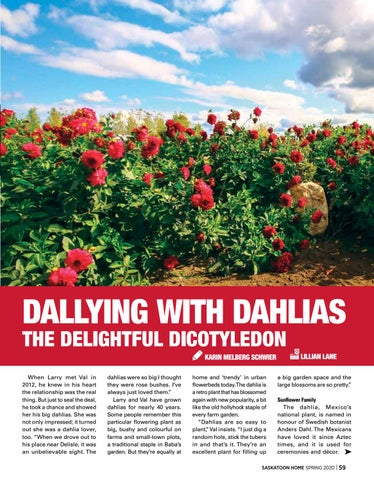Page 59 of Dallying with Dahlias