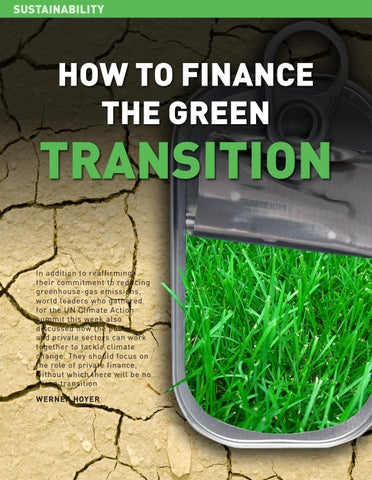 Page 36 of How to finance the green transition