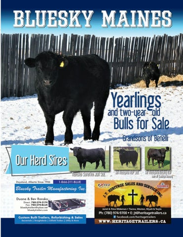 Page 35 of Comparing Conventional Embryo Production and In Vitro Fertilization(IVF) as a Means to Propagate Superior Genetics in your Beef Herd