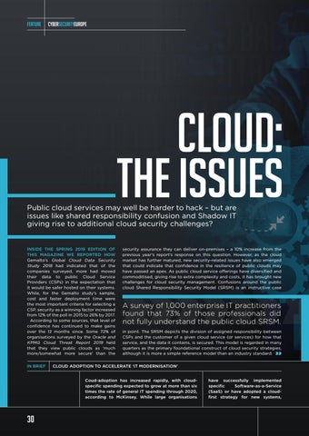 Page 30 of Cloud: The Issues