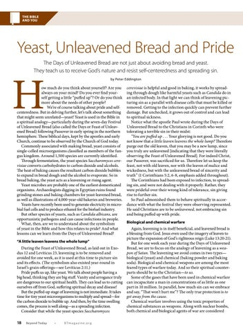 Page 18 of Yeast, Unleavened Bread and Pride