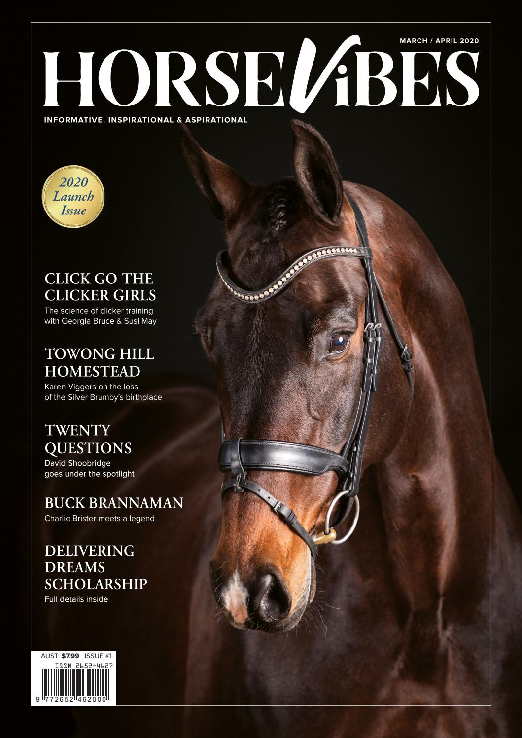 Brown draft horse Australian halter bridle with European style rubber grip reins