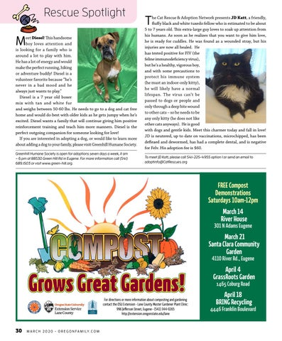Page 30 of PET RESCUE SPOTLIGHT