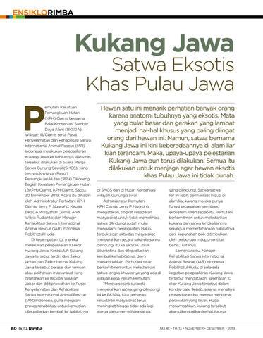 Page 62 of Kukang Jawa Satwa Eksotis Khas Pulau Jawa
