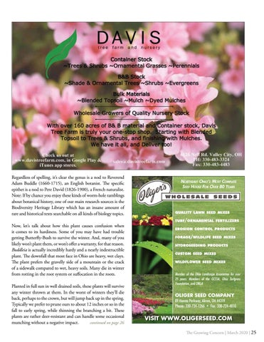 Page 25 of PLANT OF THE MONTH