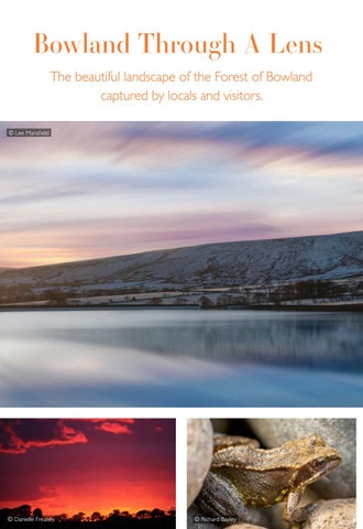 Page 20 of Bowland Through A Lens
