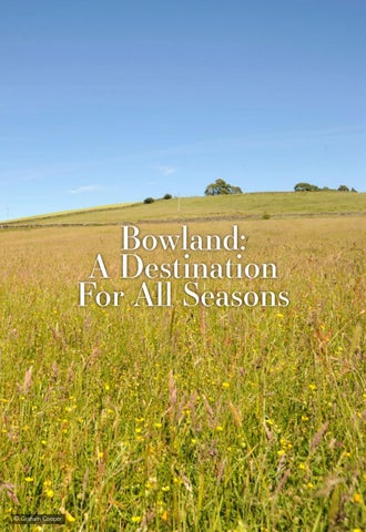 Page 30 of Bowland: A Destination For All Seasons