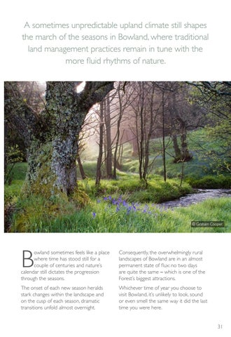 Page 31 of Bowland: A Destination For All Seasons