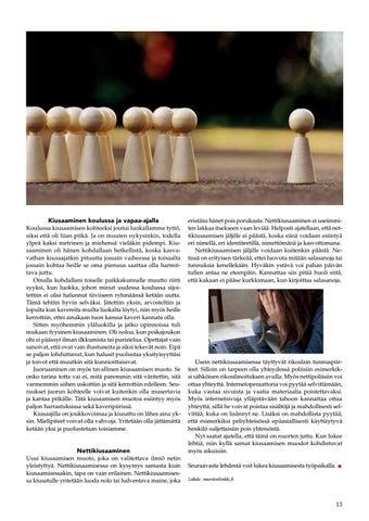 Page 13 of Kiusaaminen