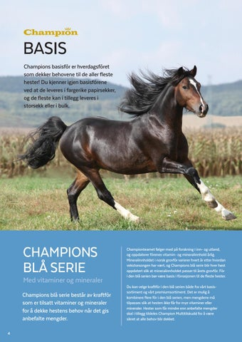 Page 4 of Champion Basis og Champions blå serie