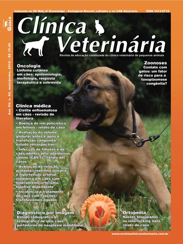 consultor diabetes canina