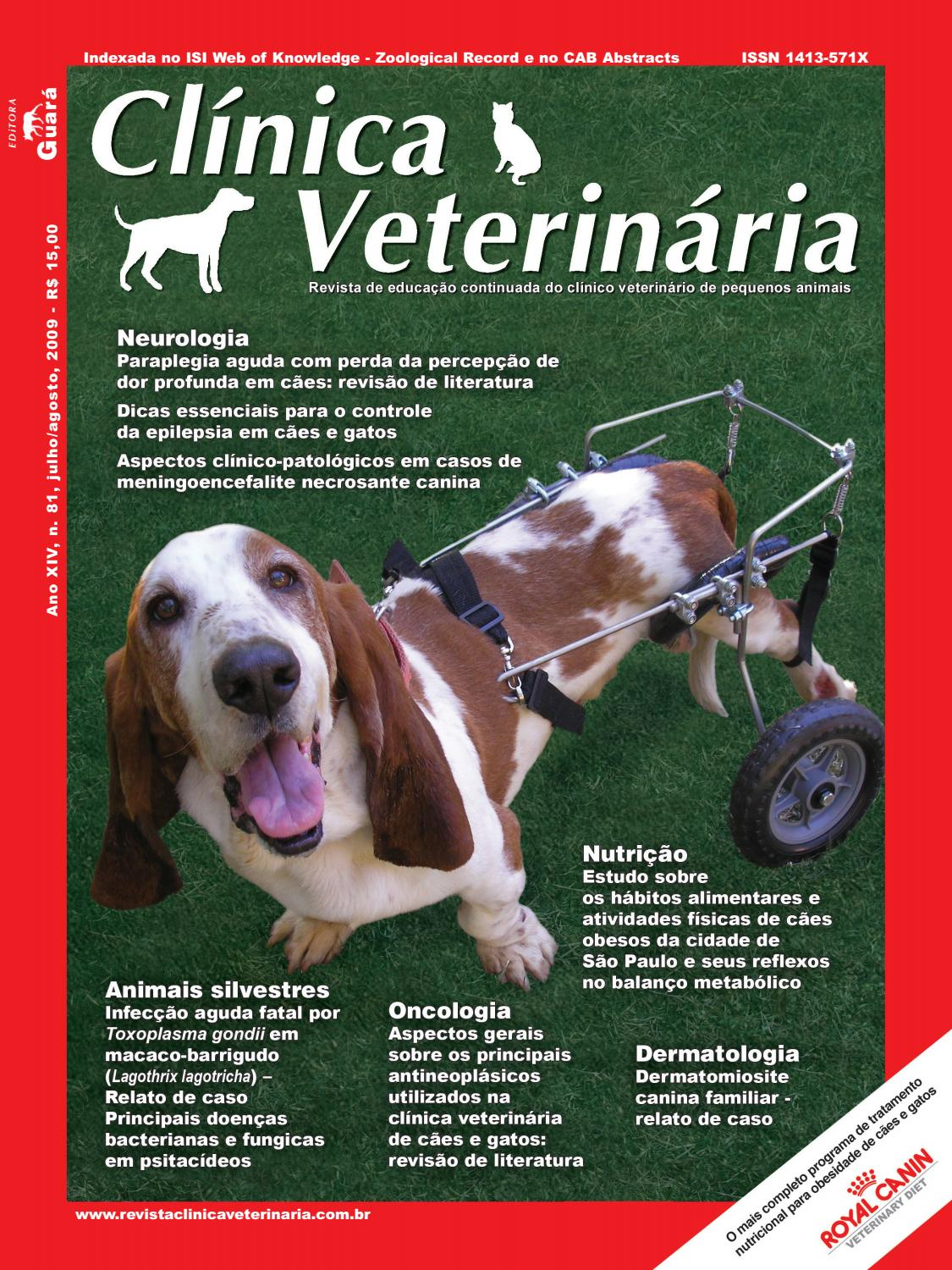 sintomas de tumor no pancreas do cachorro
