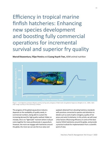 Page 11 of Efficiency in tropical marine finfish hatcheries: Enhancing new species development and boosting fully commercial operations for incremental survival and superior fry quality