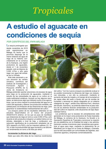 Page 20 of TROPICALES