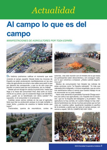 Page 3 of ACTUALIDAD