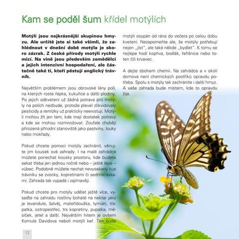 Page 12 of Kam zmizeli motýli