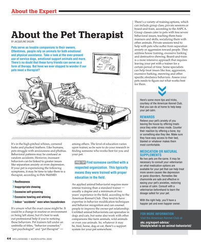 Page 44 of About the Pet Therapist