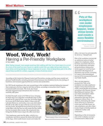 Page 46 of Woof, Woof, Work! Having a Pet-Friendly Workplace