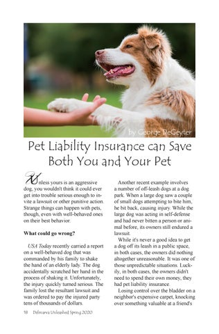 Page 18 of Pet Liability Insurance