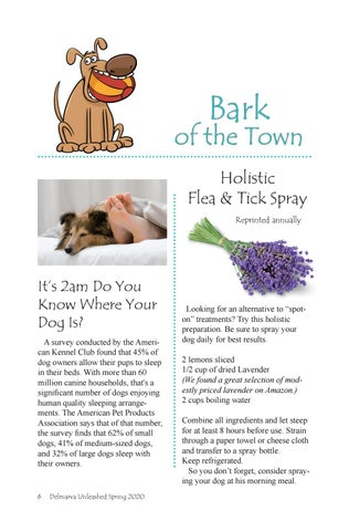 Page 6 of Bark of the Town